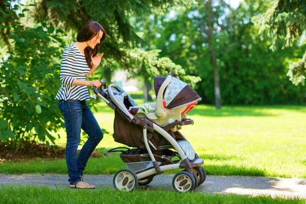Steer Clear of Bug Hangouts   No More Insect Bites On Your Baby! Infant-Safe Options For Bug Protection   bed bugs   how to keep mosquitoes away from babies   mosquito bites